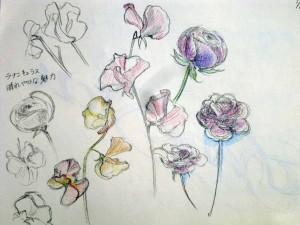 今日のアトリエ / el taller de hoy / Today's atelier